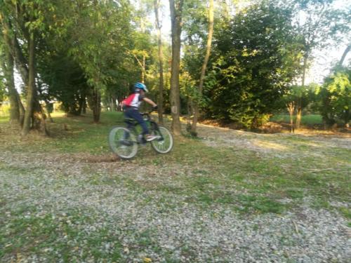 Bici (5)